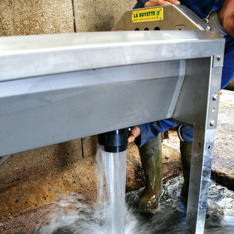 GV230 Bebedero de acero inoxidable de gran desague para vacs lecheras